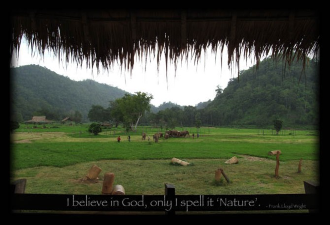 Postcard - I Believe in God. Elephant Nature Park, Chiang Mai, Thailand.