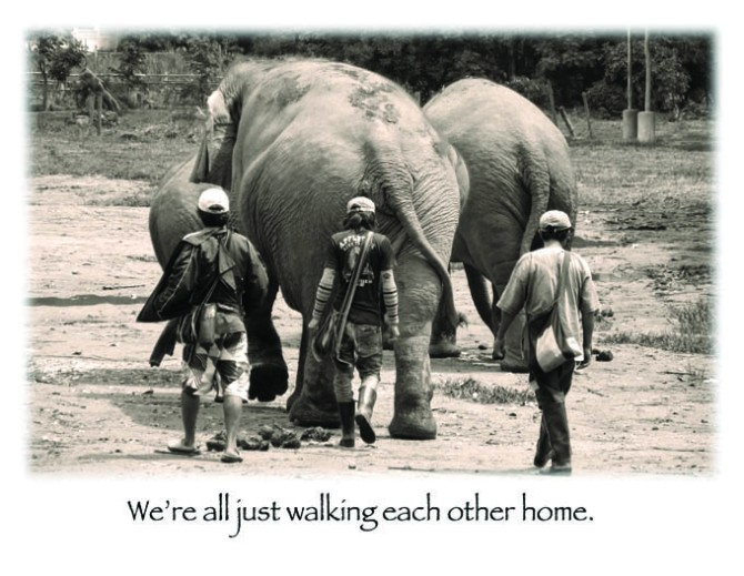 Postcard - Walking Each Other Home