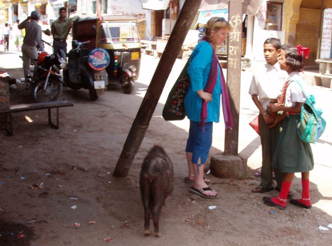 Me getting a little closer to a pig in Rajasthan than I prefer.