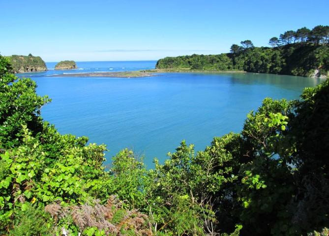 Along the West Coast towards Taranaki, North Island, New Zealand.