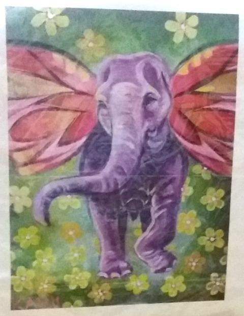 Kabu - an elephant with intestinal fortitude!!!